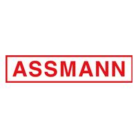 assmann1.png